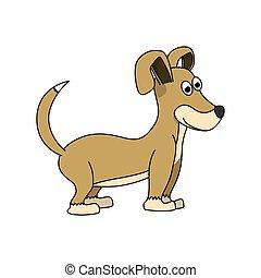 peu, chien, paws., brun, rigolote, blanc