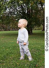 peu, dorlotez garçon, marche, dans parc, extérieur