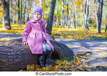 peu, ensoleillé, parc, automne, girl, jour, heureux