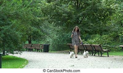 peu, femme, coup, deux, promenade, park., statique, avoir, doggies, blanc