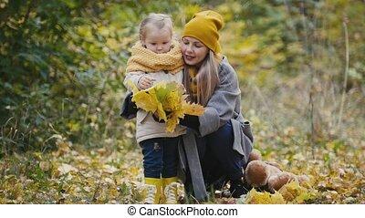 peu, fille, elle, -, mère, parc, automne, maman, enfant, feuille, girl, jouer, érable, donne