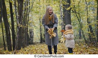 peu, fille, elle, -, maman, mère, parc, jouer, automne, enfant, feuilles, girl, jeter