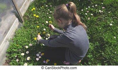 peu, fleurs, girl, jouer