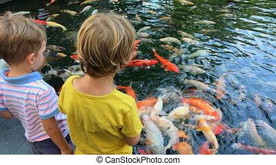 peu, garçons, deux, coloré, temple., étang, alimentation, sacré, coup, asiatique, carpes, téléphone