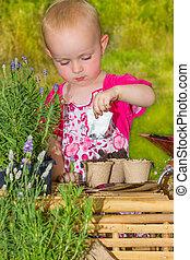 peu, jardin, empoter, graines, girl, adorable
