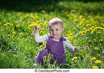 peu, jeux, floraison, clairière, pissenlits, girl