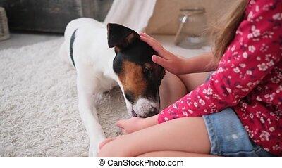 peu, jouer, conjugal, girl, chien