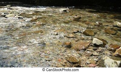 peu profond, clair, ruisseau, doux