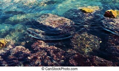 peu profond, mer, rochers