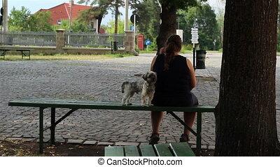 peu, propriétaire, chien, séance