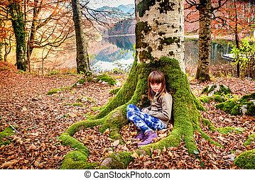 peu, séance, montenegro, national, biogradska, parc, arbre, gora, automne, girl