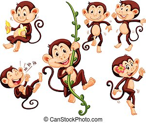 peu, singes, choses, différent