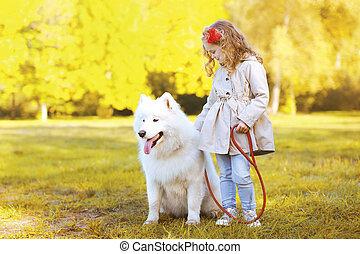 peu, style de vie, samoyed, chien, photo, automne, marche, girl, t
