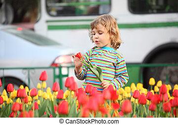 peu, tulipes, t-shirt, rue, rayé, girl