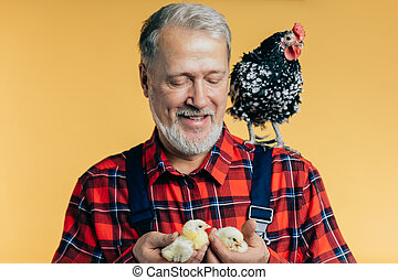 peu, vieux, regarder, paysan, plaisir, poulet, amical