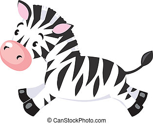 peu, zebra