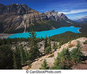 peyto, קנדה, אגם, בנפ