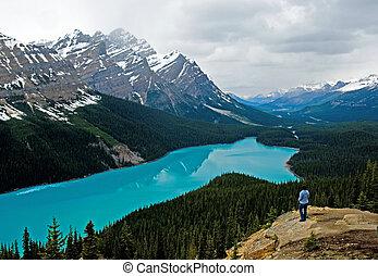 Peyto lake at spring - Banff National park, Canada