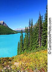 Peyto Lake in Canada