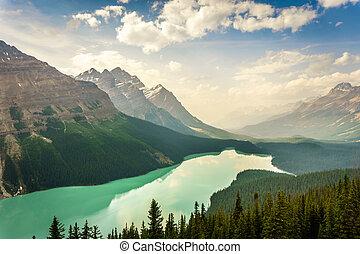 peyto see, in, kanadische rockies, berge, alberta, kanada