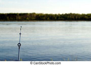 pez, bastidor