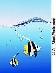 pez, en, el, océano