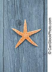 pez, madera, estrella