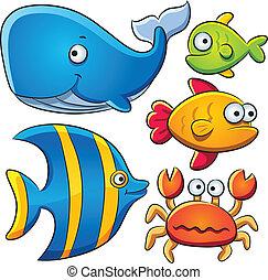 pez, mar, colección