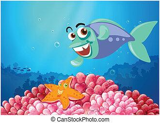 pez, mar, estrellas de mar, debajo