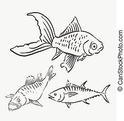 pez, mascota, animal, bosquejo