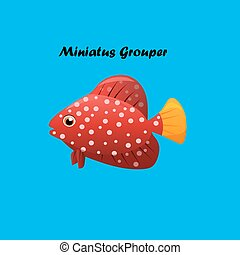 pez, miniatus, grouper