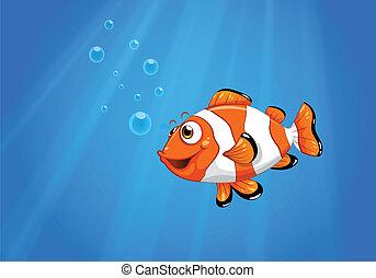 pez, nemo, mar