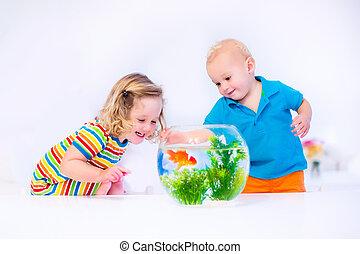pez, niños, tazón, mirar