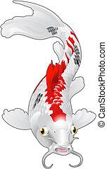 pez, oriental, carpa, koi