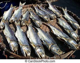 pez, salado