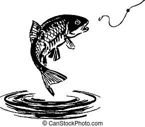 pez, saltar, afuera, de, el, agua
