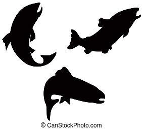 pez, silueta,  Retro, trucha