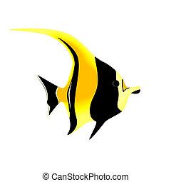pez tropical, blanco, aislado