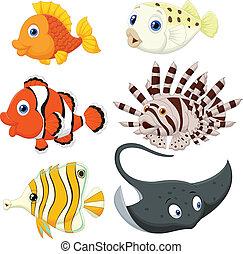 pez tropical, caricatura