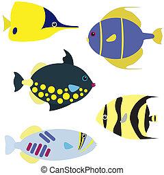 pez tropical, vector, conjunto
