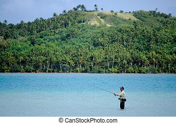 pezzo fuso, per, bonefish, in, aitutaki, laguna, cucini isole
