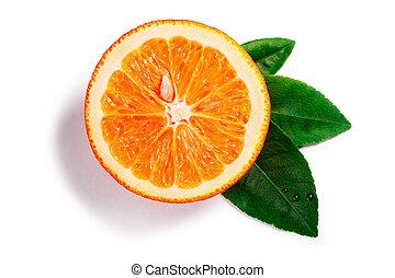pfade, blatt, oberseite, split, orange, ansicht