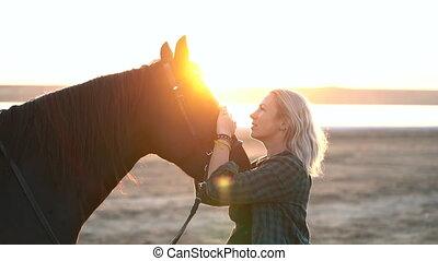pferd, erwachsener, porträt, tier, kleiner, sorgend, schöne...
