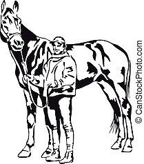 pferd, frau, sie, stolz, junger, besitz