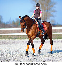 pferd, horsewoman, rotes