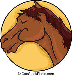 pferd, jahr