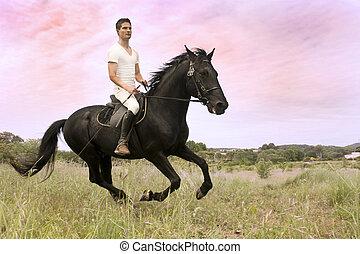 pferd, junger mann
