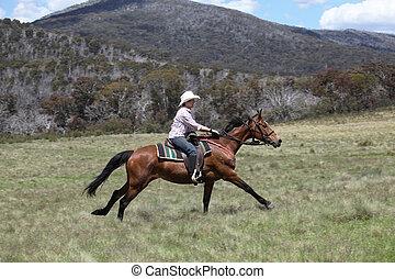 pferd mitfahrer, weibliche