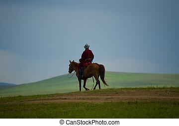 pferd, nomade, mongolisch
