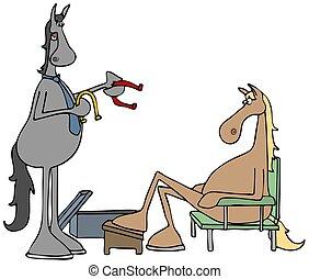 pferd, schuhe